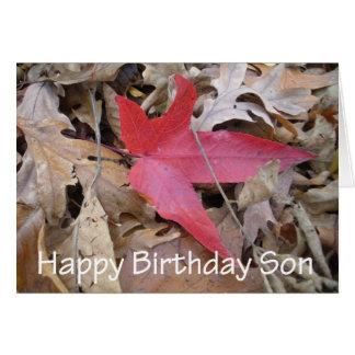 Tarjeta Hijo del feliz cumpleaños - hoja roja