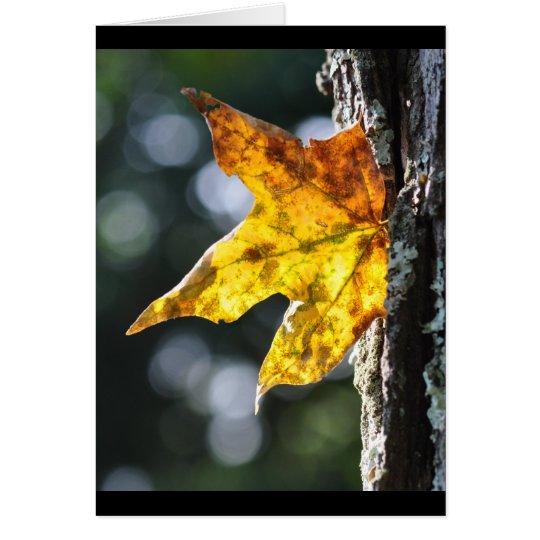 Tarjeta Hoja del otoño