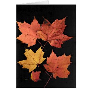 Tarjeta Hojas de otoño