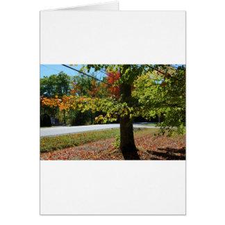 Tarjeta Hojas de otoño en Maine
