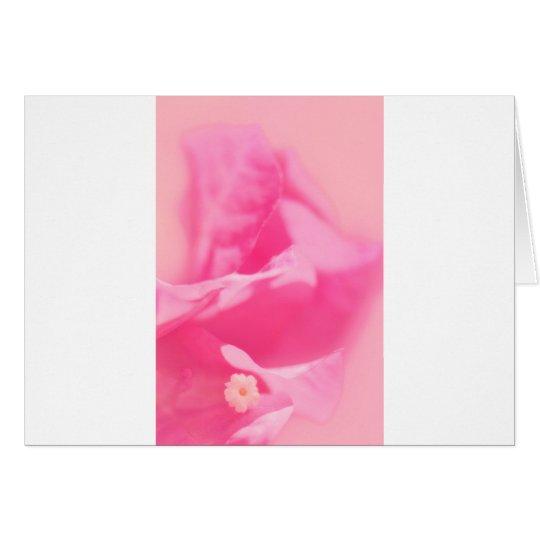 Tarjeta Hojas del Bougainvillea y primer rosados de la