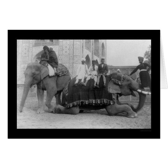 Tarjeta Hombres que viajan por el elefante en la India