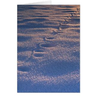 Tarjeta Huellas en nieve