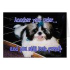 Tarjeta Humor del cumpleaños - perrito lindo de Shih-Tzu