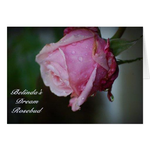 Tarjeta ideal del capullo de rosa de Belinda