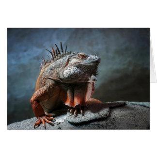 Tarjeta Iguana