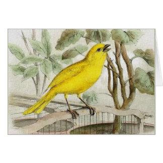 Tarjeta Ilustracion amarillo del vintage