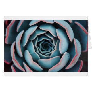 Tarjeta Impresión floral unisex asombrosa del primer macro