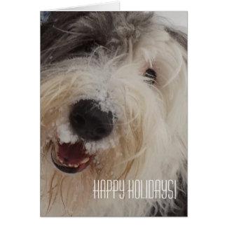 ¡Tarjeta inglesa vieja del perro pastor - buenas Tarjeta