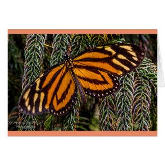 Tarjeta Inspiración de la mariposa