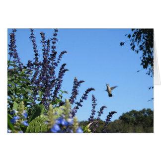 Tarjeta inspirada del colibrí