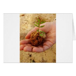 Tarjeta Inversión para el crecimiento