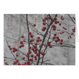 Tarjeta Invierno de NYC