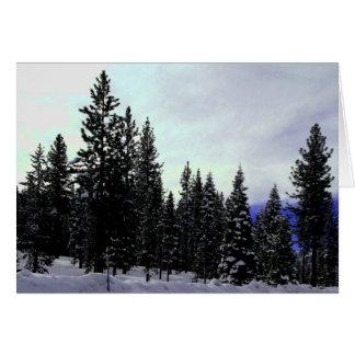 Tarjeta Invierno de Sierra Nevada