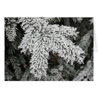 Tarjeta Invierno Frost