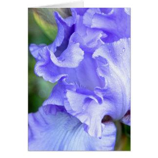 Tarjeta iris Lavanda-azul