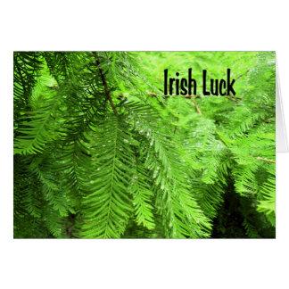 Tarjeta irlandesa de la suerte en verde