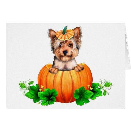 Tarjeta Jack-O-Linterna de Yorkshire Terrier Halloween