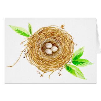 Tarjeta Jerarquía del pájaro de la acuarela con 3 huevos