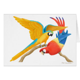 Tarjeta juguetona de los Macaws
