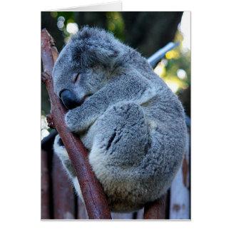 Tarjeta Koala de la empanada de Cutie