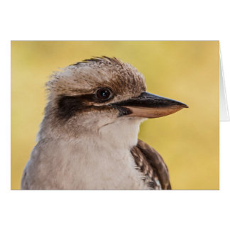 Tarjeta Kookaburra