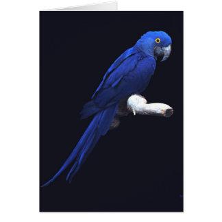 Tarjeta La belleza azul