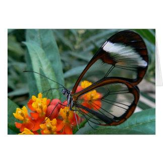 Tarjeta la mariposa de las ala-convertir-ventanas