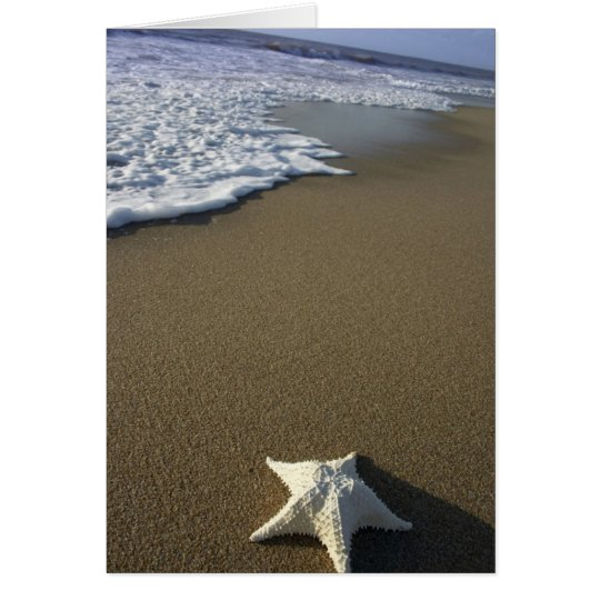 Tarjeta La playa