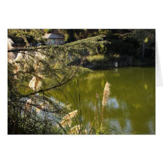 Tarjeta Lago 3 park del barranco de Franklin