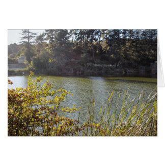 Tarjeta Lago 5 park del barranco de Franklin