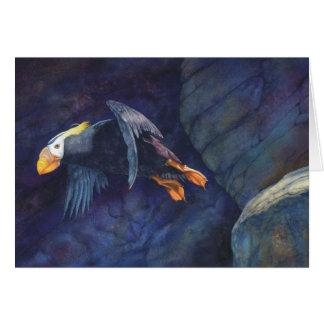Tarjeta Lanzamiento, birders