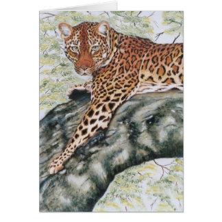 "Tarjeta ""Leopardo """