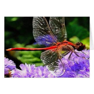 Tarjeta Libélula roja en las flores púrpuras violetas