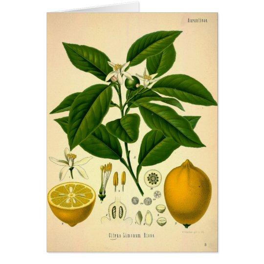 Tarjeta Limones
