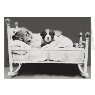 Tarjeta linda del perro y del perrito el dormir
