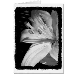 Tarjeta Lirio de la condolencia