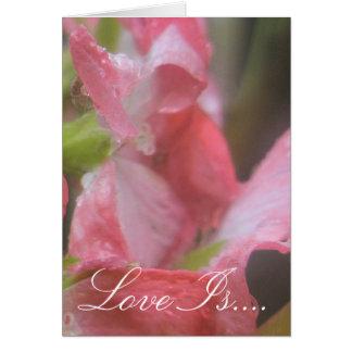 Tarjeta Lluvia rosada