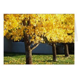 Tarjeta Los árboles del otoño en Vichy saltan centro