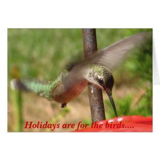 Tarjeta Los días de fiesta están para los pájaros….
