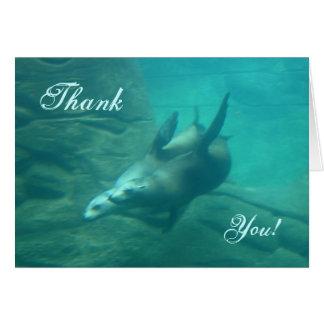 Tarjeta Los leones marinos le agradecen cardar