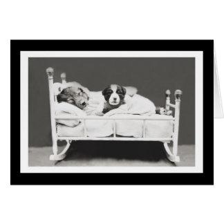Tarjeta Los perros lindos el dormir del corredor de cross