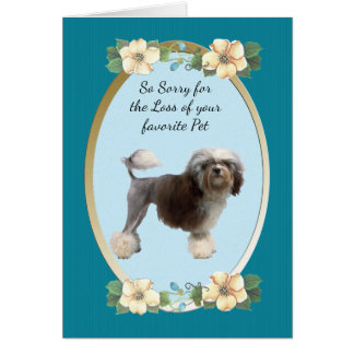 Tarjeta Lowchen, condolencia o pérdida del mascota