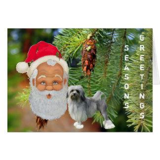 Tarjeta Lowchen, Papá Noel en fondo del pino