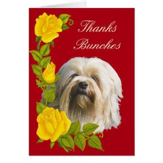 Tarjeta Lowchen y gracias de los rosas amarillos