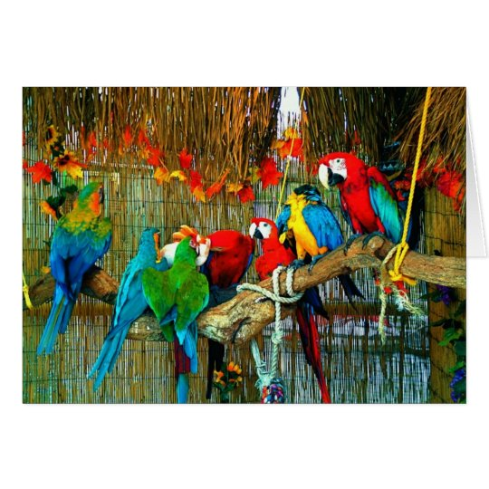 Tarjeta Macaws en desfile