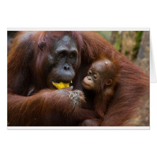 Tarjeta Madre e hijo