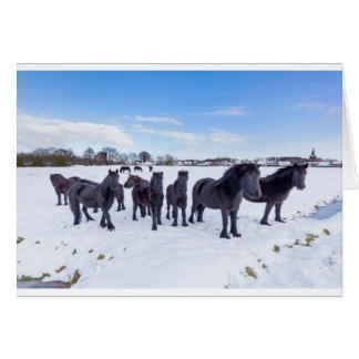 Tarjeta Manada de los caballos negros del frisian en nieve