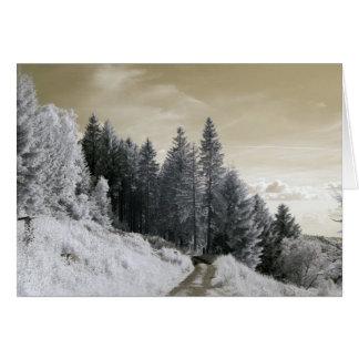 Tarjeta Manera en bosque/la fotografía infrarroja