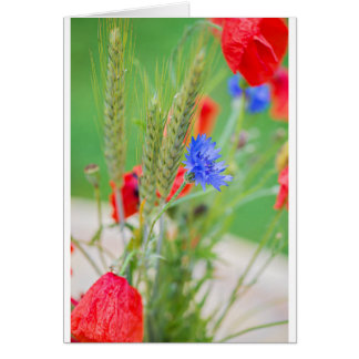 Tarjeta Manojo de amapolas, de cornflowers y de oídos
